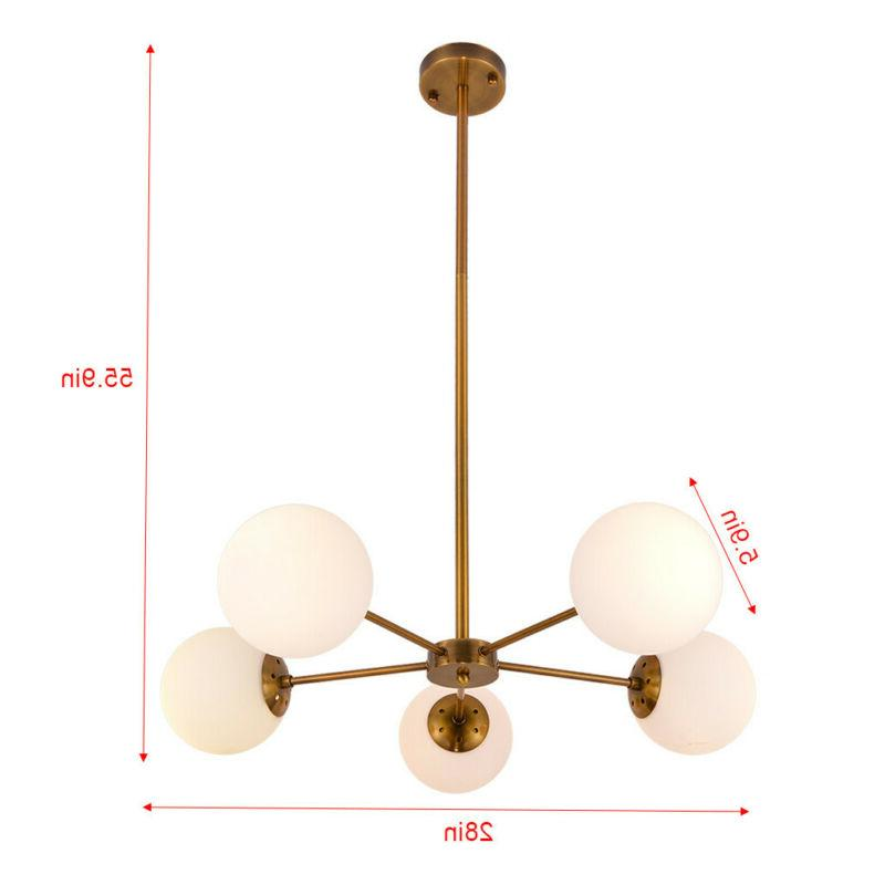 Modern Chandelier Fixture Lights Decoration